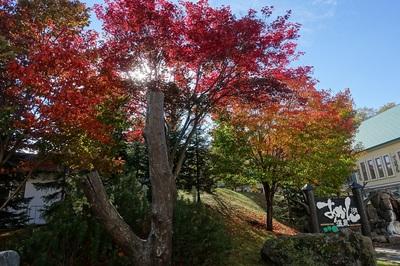 雨から秋晴れの紅葉阿寒湖