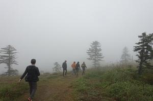 雲の中の白湯山展望台