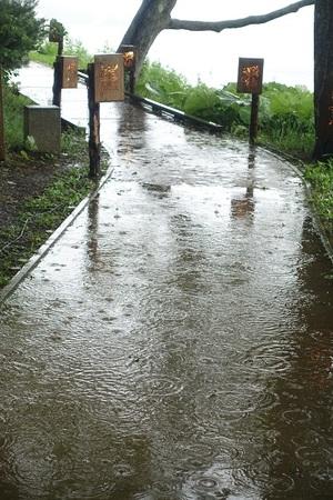 時々雨の連休