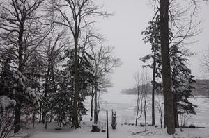 春から突然の冬景色