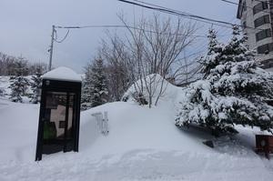 阿寒湖氷上フェスティバル最終日