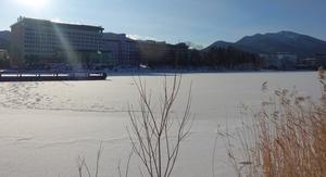 阿寒湖結氷開始!