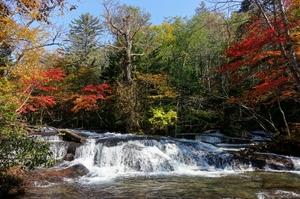 紅葉の乙女の滝