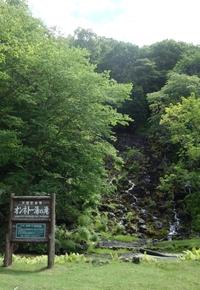 オンネトー湯の滝でキノコ撮影
