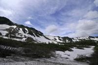 初夏の大雪山高原沼