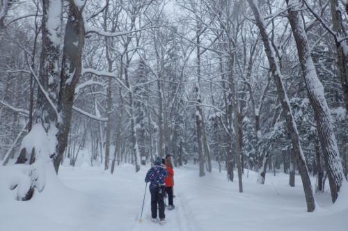 雪上のキセキ